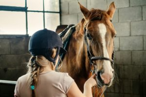 English Plus Horse Riding in London - taking care of horses at the livery
